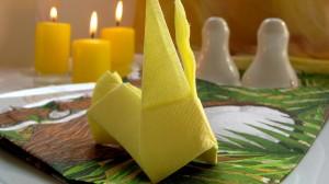 origami zaek