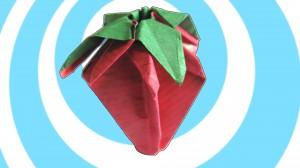 origami qgoda
